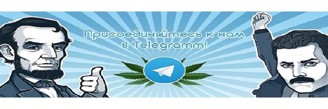 Гроверский телеграмм канал